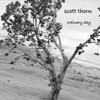 Ordinary Day album
